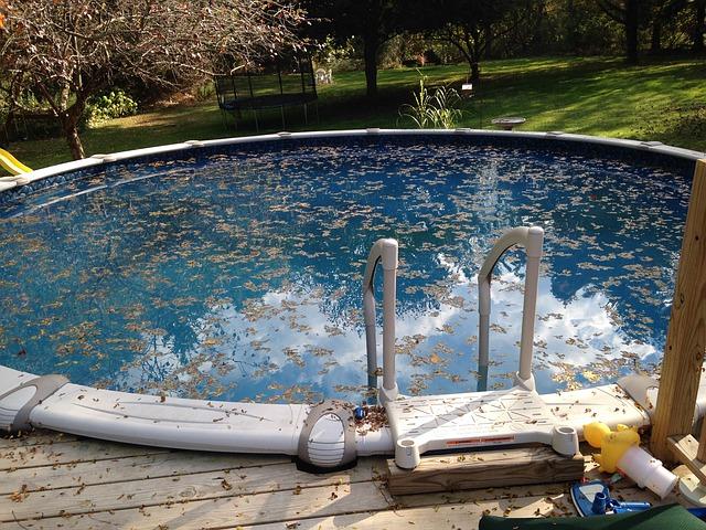 listí v bazénu