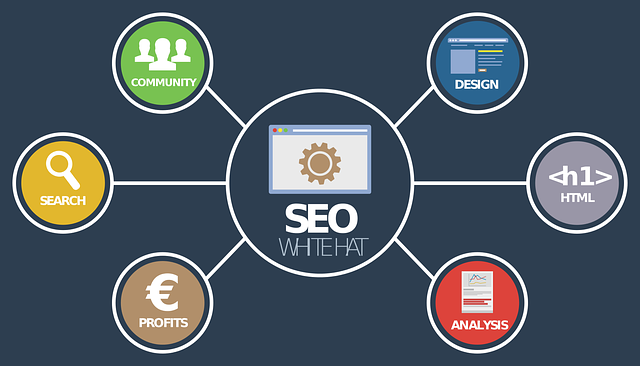 seo analýza on-line